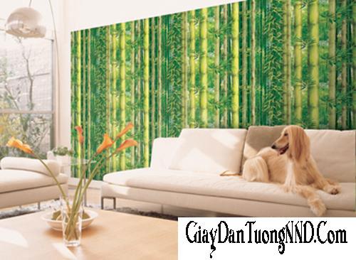 Sử dụng giấy dán tường Hàn Quốc trang trí cho phòng khách sang trọng